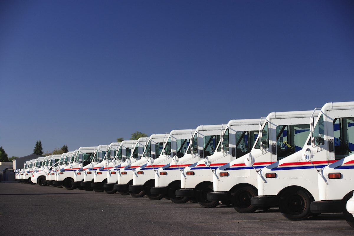 A group of fleet vehicles parked in a line.