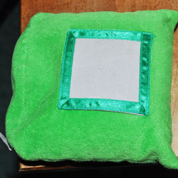green bean bag picture frame is being swapped online for free