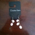 Charles Klein Shimmery Layer Earrings is being swapped online for free