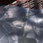2 long sheer silver Curtain Panels is being swapped online for free
