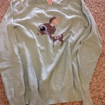 Mint cute deer sweater  is being swapped online for free