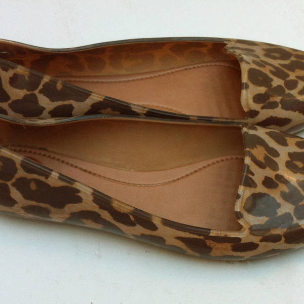 leopard flats is being swapped online for free