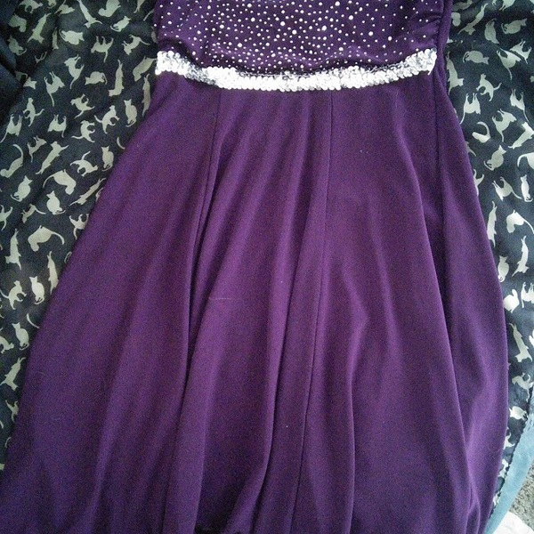 Beautiful Purple Sequined Dress is being swapped online for free