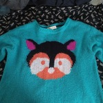Teal Chipmunk Sweater is being swapped online for free
