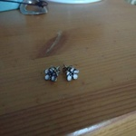 Great little flower studs is being swapped online for free