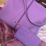 Anne Klein purse and matching wallet  is being swapped online for free