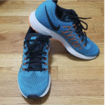 NIKE ZOOM PEGASUS 32 Mens sz 8 is being swapped online for free